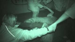 Fort Horsted ghost hunt - People pushed to the floor