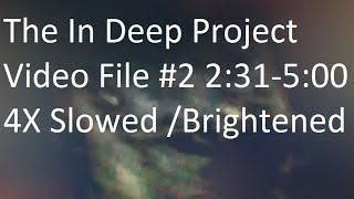 The In Deep Project Video File #2: 2:31-5:00 4x Slowed & Brightened