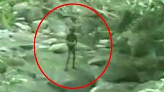 Mysterious Shadow Caught On Tape In Forest!!