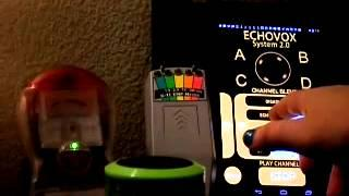 Echovox session: with Simon says game 8/20/14