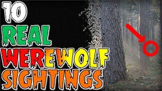10 REAL Werewolf Sightings