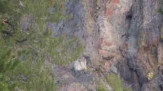 """Noble & Bull Lake - Part 22 """"Cathedral Rock"""""""