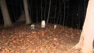 Freeman Cemetery - Ghostbox Session