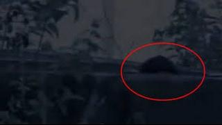 Real Ghost Videos | Ghost In Water Tank | Real Ghost Caught on Camera | Haunted Videos