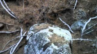 """Hot Springs Canyon Part 22 """"No Pain No Glory At Hot Springs Creek"""""""