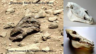 Dinosaur Skull Found On Mars?