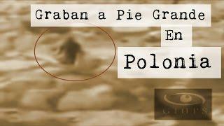 Yeti o Pie Grande en Polonia (Video Paranormal)