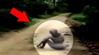 Mysterious Creatures Caught on Tape