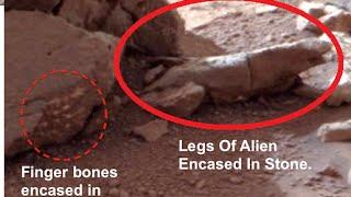 alien body found on Mars