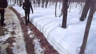 Paranormal AfterParty Maple Tree Sponsorship 2014 Sugarbush part 1