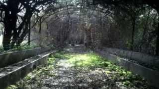 Investigación Paranormal, Temp  1 Ep  2  La Fábrica encantada de Sevilla 1ª Parte (O. Paranormal)