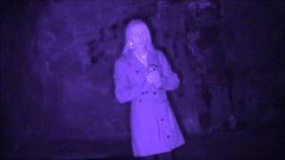 Australian Paranormal Investigators - Investigation Edinburgh Vaults - Ghost Meter