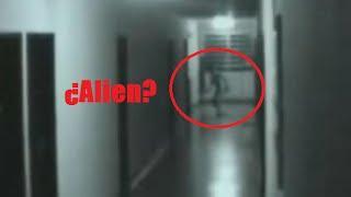 Alien captado por camara de seguridad