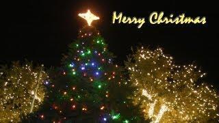 Hey Friends, Merry Christmas & Happy Holidays!!!