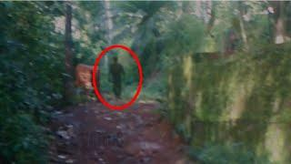 Black Shadow Caught On Camera!! Real Ghost Sightings!!