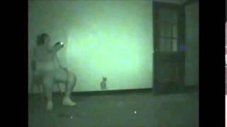 Flashlight & Ghost Box Session At Rolling Hills Asylum By SOS Paranormal & Coal Region Paranormal