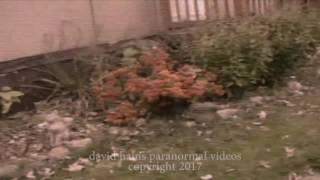 Real Fairy Caught On Camera, Strange Troll Hobbit Monster | Real OR Fake ?