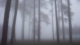 Paranormal Mysteries Events (Encounters): Incredible Alien Abduction, Church Ghost, Supernatural