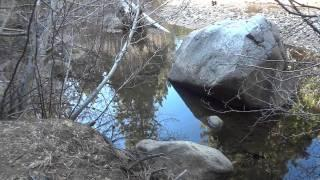 "Hot Springs Canyon Part 9 ""Following Sawmill Creek"""
