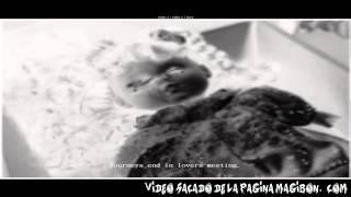 ►LOS CANALES/VIDEOS MAS PERTURBADORES Y ATERRADORES DE YOUTUBE