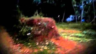 Ghost Caught On TAPE in Haunted Forest - Haunted TREE Video - Ghost found on TREE Scary video