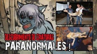 Extrañas criaturas encontradas Criptozoologia @OxlackCastro