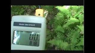 Woodford, VT - EMF Detectors