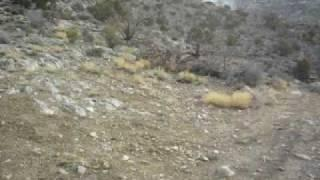 Exploration 2 Potosi Mine