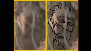 They Can't Deny That These Bigfoot Looking Beings/Spirits Are Linked To/ Or Are Tree Spirits
