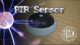 PIR Sensor Motion detector, Cheap - Beoderic Paranormal Short