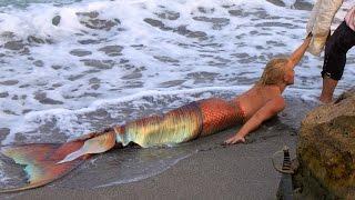 Sirenas Reales (Top)  Nuevo 2016