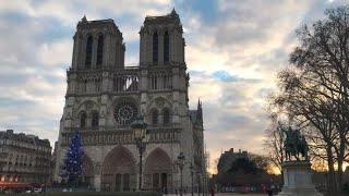 Notre Dame, teorías y perdidas