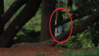 SCARY VIDEO Ghost caught on tape | Scary ghost videos & REAL scary  Videos of Ghost Caught on Video