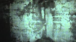 Avondale Mine Disaster Investigation; Part 2