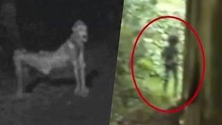 5 Scariest Creatures Caught On Camera & Spotted In Real Life | Scary Videos | Real Ghost Videos