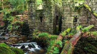 Kennall Vale Cornwall Live ghost hunt saturday 25th November 2017