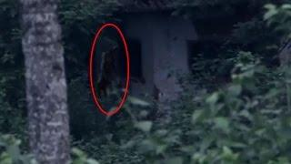 Real Ghost Attacking People | Scary Ghost Videos | Haunting Ghost Videos