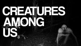 Strange Paranormal Creatures Among Us Caught on Tape