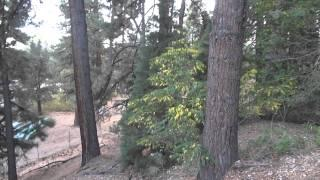 """Bowers Mansion Part 4 """"A Handprint Along The Family Cemetery Trail"""""""