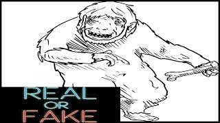 The Baby Yeti Real or Fake Episode 58