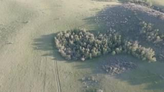 Possible bigfoot in Idaho!! Flying the drone around and ran across this Breakdown