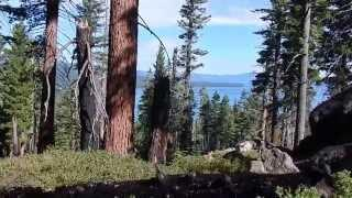 "D.L. Bliss State Parks Rubicon Trail - Part 4 ""Traversing An Ancient Forest"""