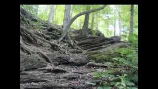 Prophet's Rock - EVP Session
