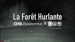 Gs Paranormal : La Forêt Hurlante