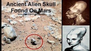 Ancient Alien Skull Found On Mars?