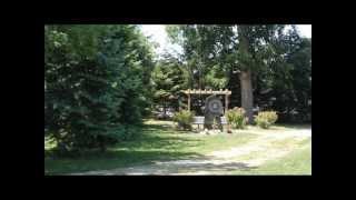 Sylvia Likens Memorial - Pine Trees