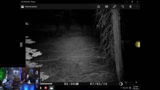 Bigfoot does it again! Paranormal Central® July 24, 2016