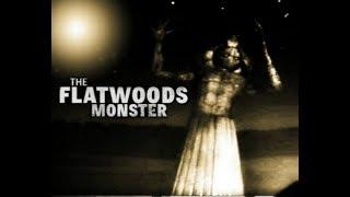 The Flatwoods Monster | Unexplained Mysterious Creatures,  Monsters in America