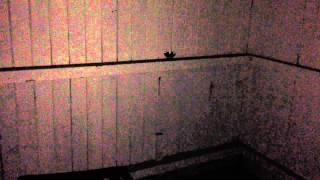 Paranormal Activity at MILL STREET BARRACKS LIVERPOOL, UK                      08/11/2014 The Beg..5