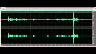 "Slated Lady II - EVP ""weird noise"""